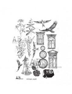 Tracing Paper AB STUDIO 003